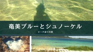 ビーチの巡りの旅|奄美ブルーとシュノーケル【奄美大島】