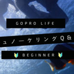GoProユーザーが知っておきたい|シュノーケリングのQ&A【初心者】