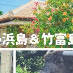 パノラマ風景小浜島&水牛車めぐり竹富島【石垣島離島】