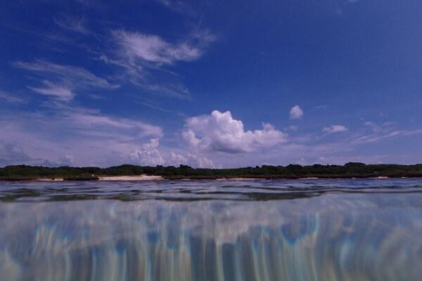 ドームポートなしで半水面を撮影した例1