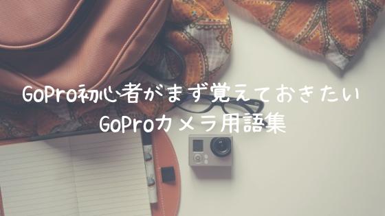 GoPro初心者がまず覚えておきたいGoProカメラ用語集