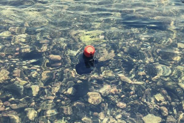 ハンドラーが海で浮かんでる様子(その1)