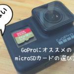 失敗しないGoProにオススメのmicroSDカードの選び方